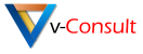 v-consult logo with text padding large